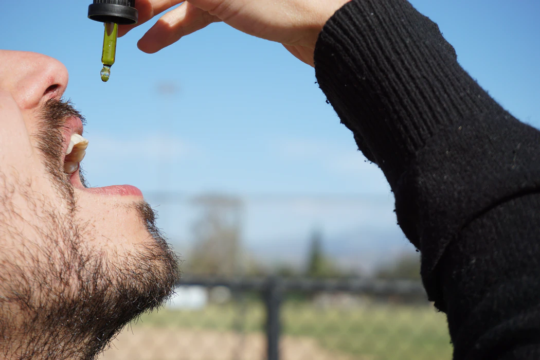 3 Reasons why CBD oil is your perfect companion